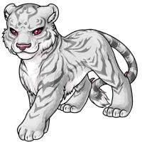 Tigrean arid