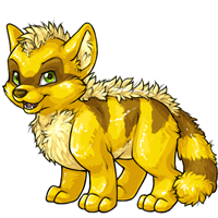 Terracoon gold