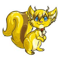 Popoko gold