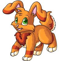 Kanis sun