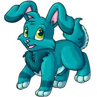 Kanis aqua