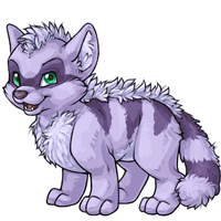 Terracoon lilac