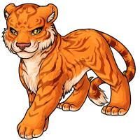 Tigrean sun