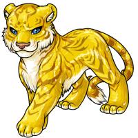 Tigrean gold