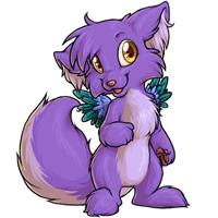 Torrey lilac