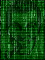 Mwowm matrix by scalpod