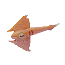 Cured Arrow Ray Icon