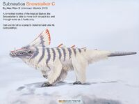 Snowstalker C