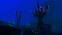Tree Spires Biome