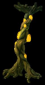 Kelp Root Flora