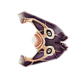 Cured Boomerang Icon