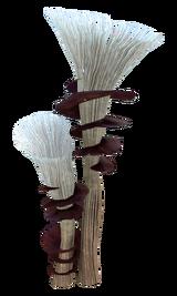 Spiral Plant Flora