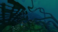 Lilypad Islands Fallen Lilypad