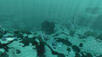 Sparse Reef Large Wreck20