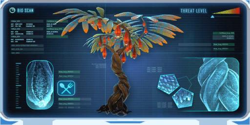 Lantern Tree-0