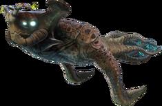 Sea Emperor Fauna