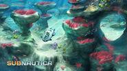 CoralReefZone3 Small-1024x576