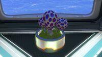 Planter Pot (3)