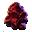 Bioma icon.fw