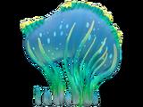 Sea Crown
