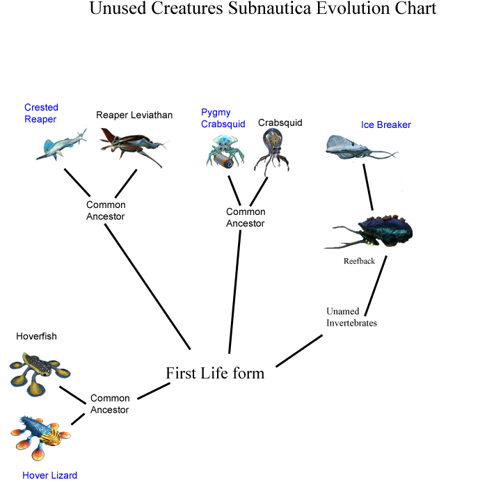 Unused Subnautica creature evolution chart