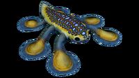 Hoverfish Fauna