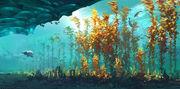 Arctic kelp 08 FINAL
