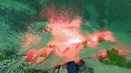 Flare (3)