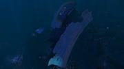 Grand Reef Wreck 2