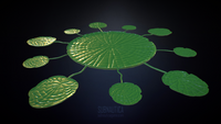 Lilypad Highpoly WIP