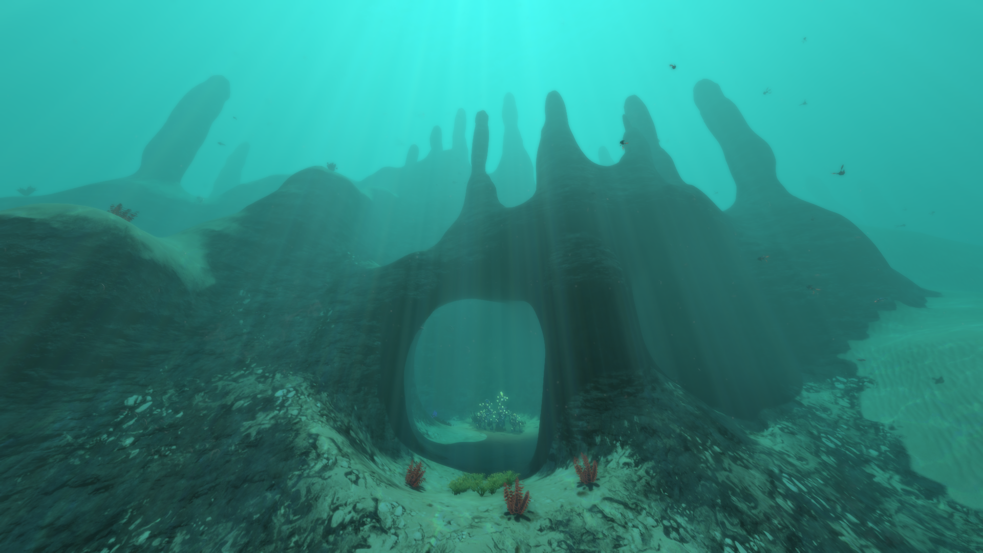 Sparse Reef Biome