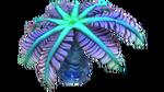 Blaue Palme