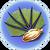 Pygmy Fan Seed