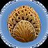 サンゴチューブサンプル