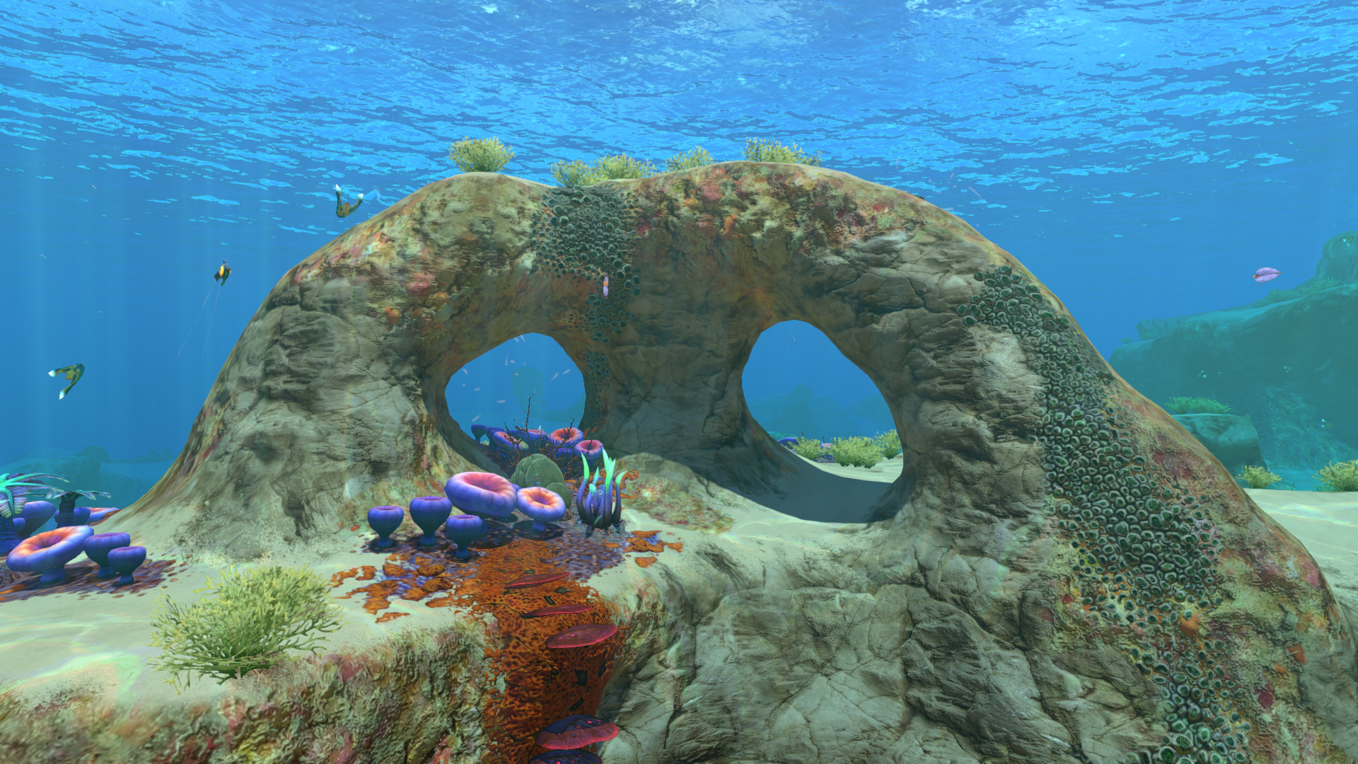 Safe Shallows Rock Arch