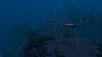 GR Sea Treaders