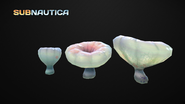 Blood mushrooms model