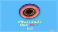 Barnaclesucker