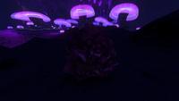 Large Magnetite Deposit