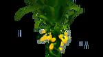 Creepvine Flora