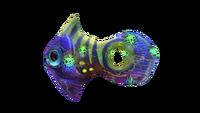 Infected Holefish