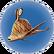 Garryfish cuit