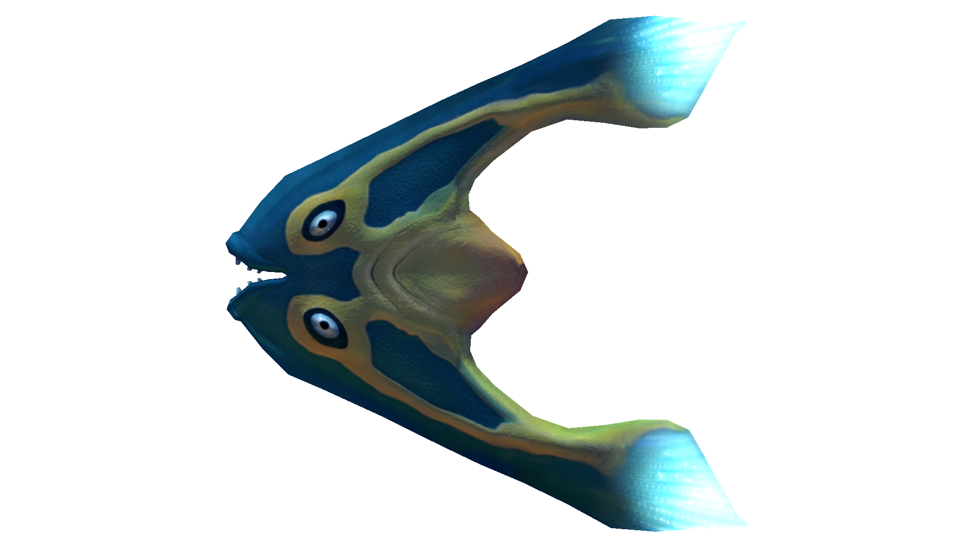 Fichier:Boomerang Fauna.png