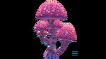 Pink Mushroom Flora