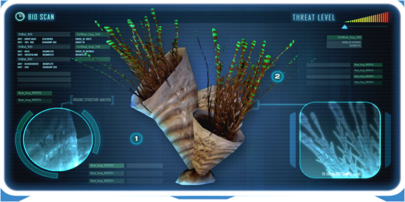 Spiked Horn Grass Data Bank Image