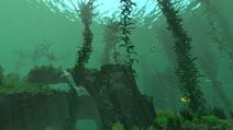 KelpForestTrue