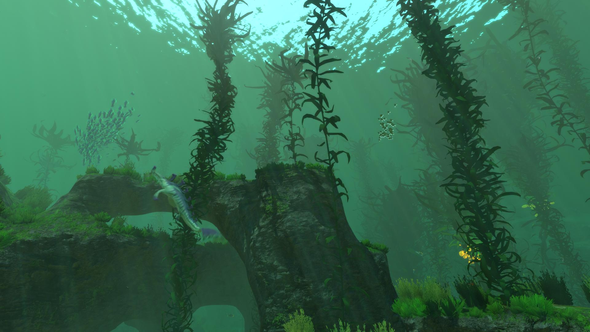 Kelp Forest   Subnautica Wiki   FANDOM powered by Wikia