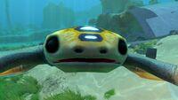 Hoverfish (10)