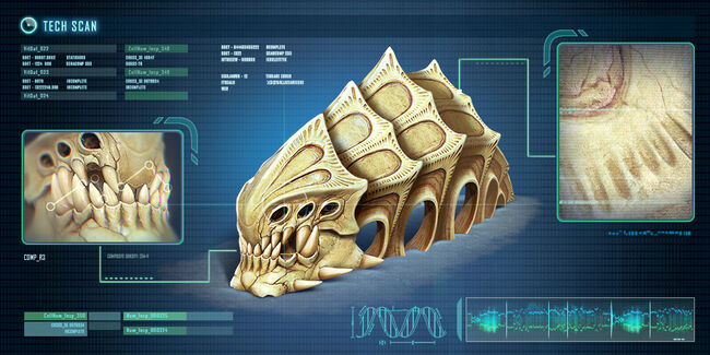 Fox3d-entertainment-caveskeletonscan