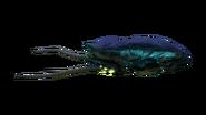 Reefback Fauna Juvenile